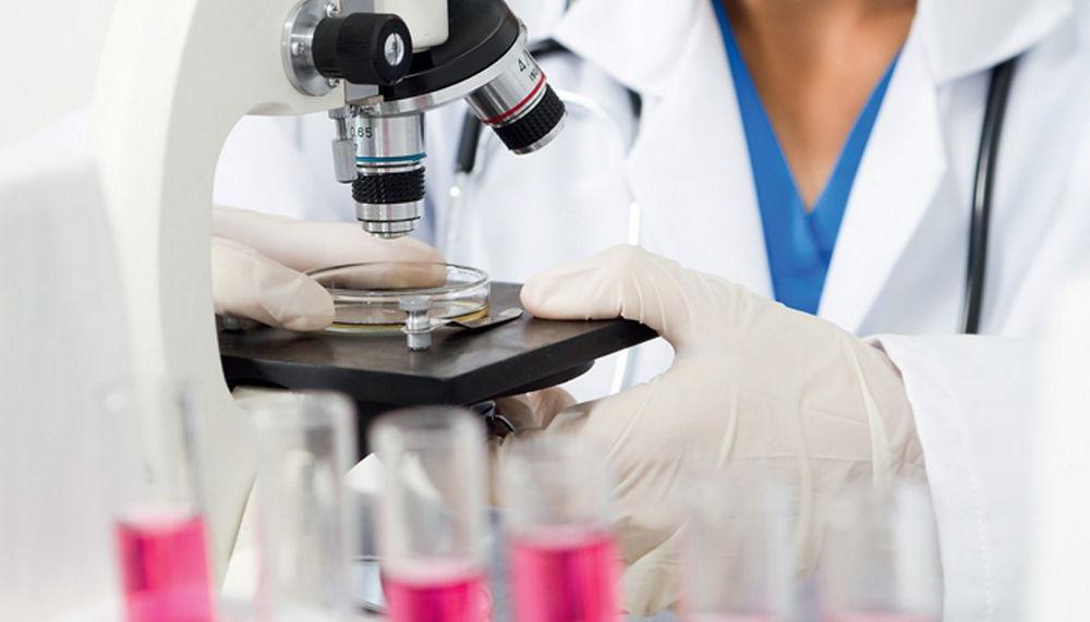 Грибковые заболевания кожи: симптомы, названия видов микоза, диагностика заболевания, принцип лечения, наружные препараты, системные препараты, народные средства, кандидоза соскоб лицо средство грибковый вид диагностика симптом